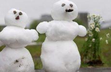 Холодное лето в Казани и теплица