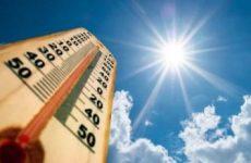 Жаркое лето в Казани и теплица